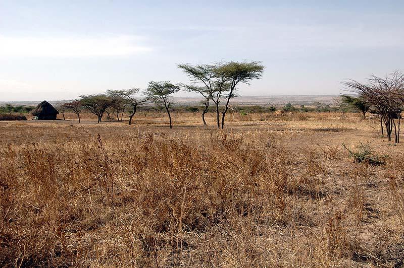 Типичный пейзаж в районе Джиджига. Современный снимок