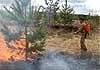 В Мордовии провели масштабные учения по тушению лесных пожаров (фото и видео)