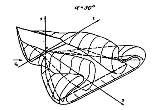 Рис. 20. Общая вихревая структура ПГО и крыла на больших углах атаки