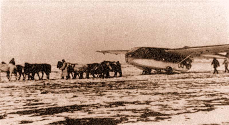 Транспортно-десантные планеры «Гота» Go242 активно применялись для снабжения окруженных в Великих Луках частей Вермахта