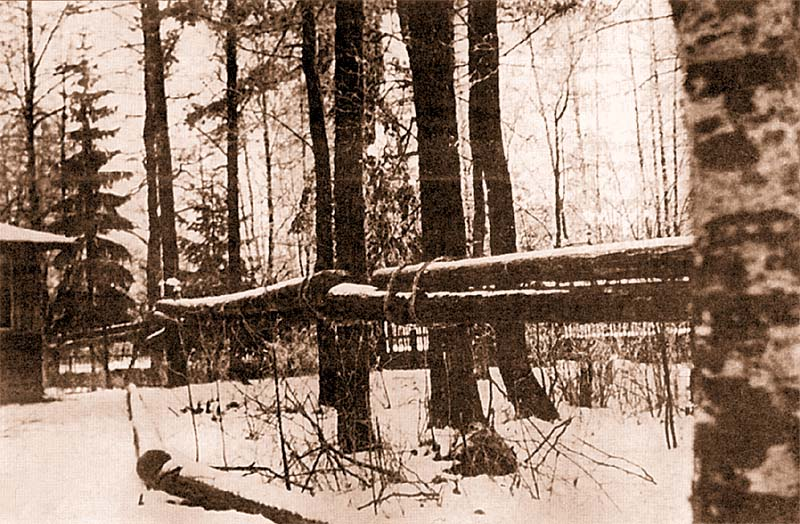 Противобашенный барьер из бревен. Карельский перешеек, февраль 1940 года
