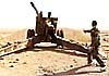 Легендарные орудия-ветераны, громившие нацистов, теперь истребляют террористов в Сирии